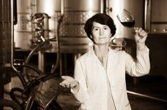 El experto estima calidad del vino rojo en lagar imágenes de archivo libres de regalías