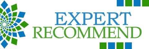 El experto recomienda horizontal azulverde Imagen de archivo