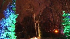 El exterior de la casa o del restaurante moderna, las luces de la Navidad se enciende en los árboles, en el cielo nocturno, movim almacen de video