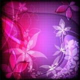 El extracto florece el ejemplo Imagen de archivo