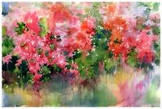 El extracto florece la pintura de la acuarela Flores multicoloras de la primavera Fotos de archivo