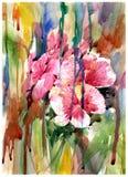 El extracto florece la pintura de la acuarela Primavera multicolora Imagenes de archivo