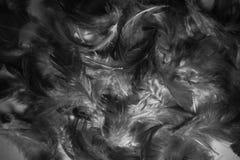 El extracto hermoso del primer texturiza las plumas coloridas fondo y papel pintado fotos de archivo