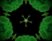 El extracto sacó estrella echada a un lado de la mandala 5 Foto de archivo libre de regalías