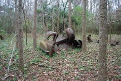 El extremo posterior de un gran santuario viejo del pantano de Ford Foto de archivo
