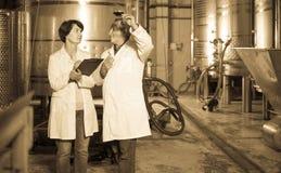 El fabricante del experto y del vino estima calidad del vino rojo en copa fotos de archivo libres de regalías