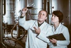El fabricante del experto y del vino estima calidad del vino rojo en copa imagen de archivo