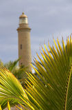 El Faro Lighthouse. Palm tree fronds in the foreground with the El Faro Lighthouse in the distance royalty free stock photos