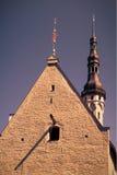 El fasade del consistorio viejo Foto de archivo libre de regalías