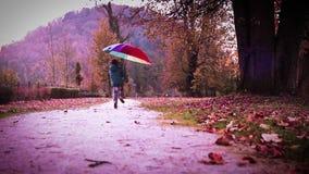 El feliz niño pequeño salta con el paraguas de varios colores en parque del otoño almacen de video