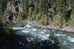 El ferrocarril del indicador estrecho de Durango a Silverton que corre a través de Rocky Mountains por los Animas del río en Colo Fotos de archivo
