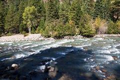 El ferrocarril del indicador estrecho de Durango a Silverton que corre a través de Rocky Mountains por los Animas del río en Colo Imagen de archivo libre de regalías