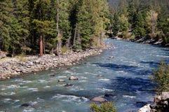 El ferrocarril del indicador estrecho de Durango a Silverton que corre a través de Rocky Mountains por los Animas del río en Colo Imagenes de archivo