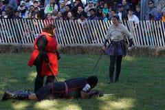 El festival medieval 2015 en la parte 3 11 del parque de Tryon del fuerte Fotografía de archivo libre de regalías