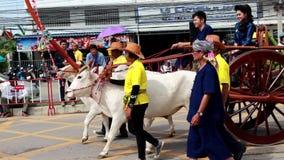 El festival tradicional de la procesión de la vela de Buda almacen de video