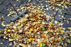 El filtrar encima de las hojas de otoño Imagen de archivo