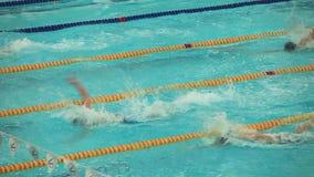 El final se divierte la natación almacen de video