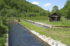 El fish-pond Fotografía de archivo libre de regalías