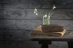 El florero con los snowdrops en los libros viejos y un vintage exoneran el vientre contra un r Fotografía de archivo libre de regalías