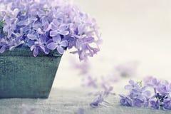El florero con un ramo de primavera púrpura de la lila florece Imágenes de archivo libres de regalías