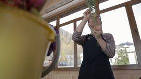 El florista asiático rasga las hojas secas de una planta alta por la ventana durante día almacen de video