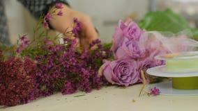 El florista coge una rosa metrajes