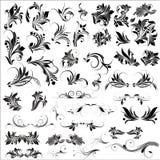 El Flourish Vectors elementos Imagen de archivo