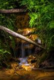 El fluir de la corriente de agua dulce Foto de archivo libre de regalías