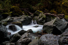 El fluir Misty River fotos de archivo libres de regalías