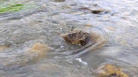 El flujo rápido de agua entre las piedras almacen de video