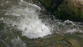 El flujo rápido del río cerca de la piedra almacen de video