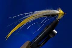 El Fly-fishing Foto de archivo libre de regalías
