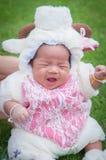 El foco en el bebé recién nacido asiático con las pequeñas ovejas de los trajes en el jardín y la madre la está deteniendo Imagenes de archivo