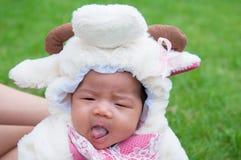 El foco en el bebé recién nacido asiático con las pequeñas ovejas de los trajes en el jardín y la madre la está deteniendo Imágenes de archivo libres de regalías