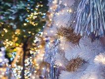 El foco selectivo en el primero plano del árbol de navidad El backgro Foto de archivo libre de regalías