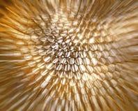 El fondo abstracto hermoso, los rayos borrosos suaves apresura el effe del bokeh Fotos de archivo libres de regalías