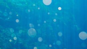 El fondo azul brillante del agua con la lente señala por medio de luces fotos de archivo libres de regalías