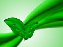 El fondo brillante abstracto del verano con las Líneas Verdes conectó las hojas verdes Fotos de archivo