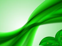 El fondo brillante abstracto del verano con las líneas y el verde verdes de conexión se va en la esquina inferior Fotografía de archivo libre de regalías