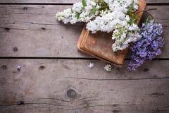 El fondo con la lila aromática fresca florece en los libros viejos en VI Imagen de archivo libre de regalías