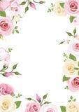 El fondo con las rosas rosadas y blancas y lisianthus florece Ilustración del vector Fotografía de archivo libre de regalías