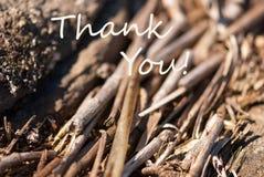 El fondo de bambú le agradece Imagen de archivo