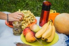 El fondo de la comida campestre con el vino blanco y el verano da fruto en hierba verde imagen de archivo libre de regalías