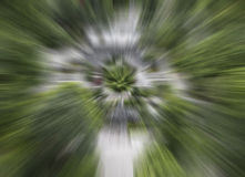el fondo de la falta de definición de movimiento de la velocidad del extracto del color verde, parte radial abstracta empañó el f Imagen de archivo