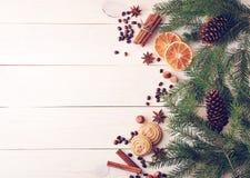 El fondo de la Navidad con el piel-árbol ramifica, los conos, naranja secada Imagen de archivo