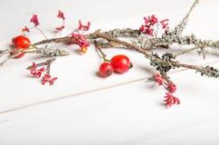 El fondo de la Navidad, del Año Nuevo o del otoño, la composición plana de la endecha de los ornamentos naturales de la Navidad y Fotos de archivo libres de regalías