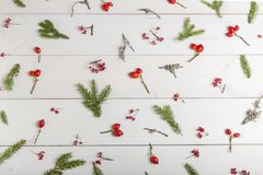 El fondo de la Navidad, del Año Nuevo o del otoño, la composición plana de la endecha de los ornamentos naturales de la Navidad y Fotos de archivo