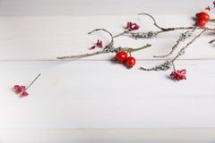 El fondo de la Navidad, del Año Nuevo o del otoño, la composición plana de la endecha de los ornamentos naturales de la Navidad y Fotografía de archivo