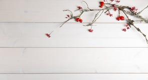 El fondo de la Navidad, del Año Nuevo o del otoño, la composición plana de la endecha de los ornamentos naturales de la Navidad y Foto de archivo