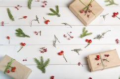 El fondo de la Navidad, del Año Nuevo o del otoño, la composición plana de la endecha de los ornamentos naturales de la Navidad y Imagen de archivo